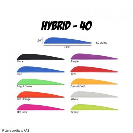 AAE Hybrid 40